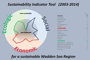 WSF Indicators Project 2003-2014